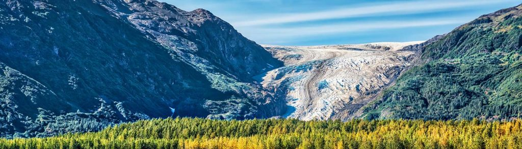 6 kenai fjords kayak trips