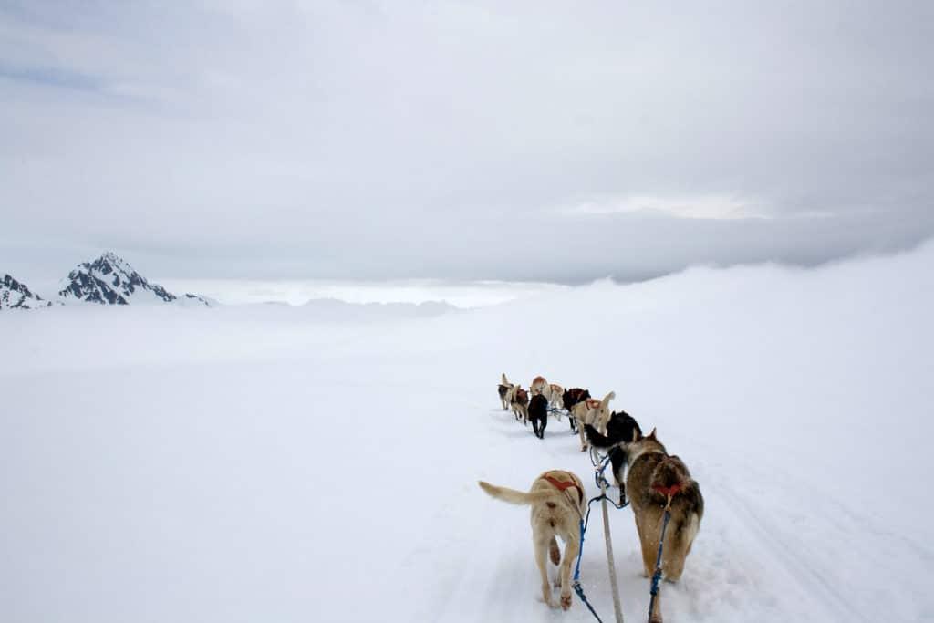 Things to do at Kenai Fjords National Park