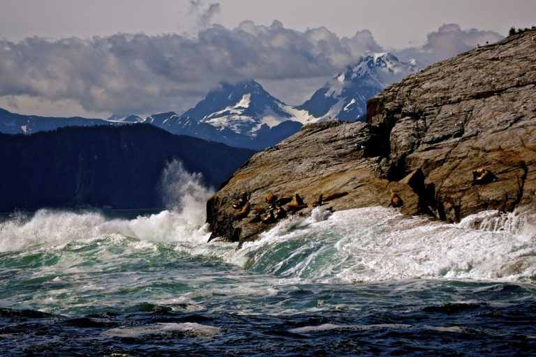 Things to do at Kenai Fjords National Park this winter